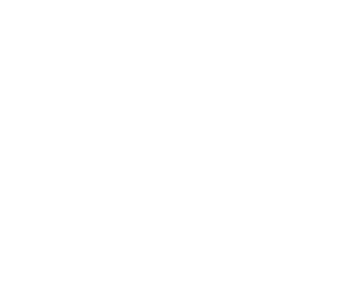 The Cocktail Experience